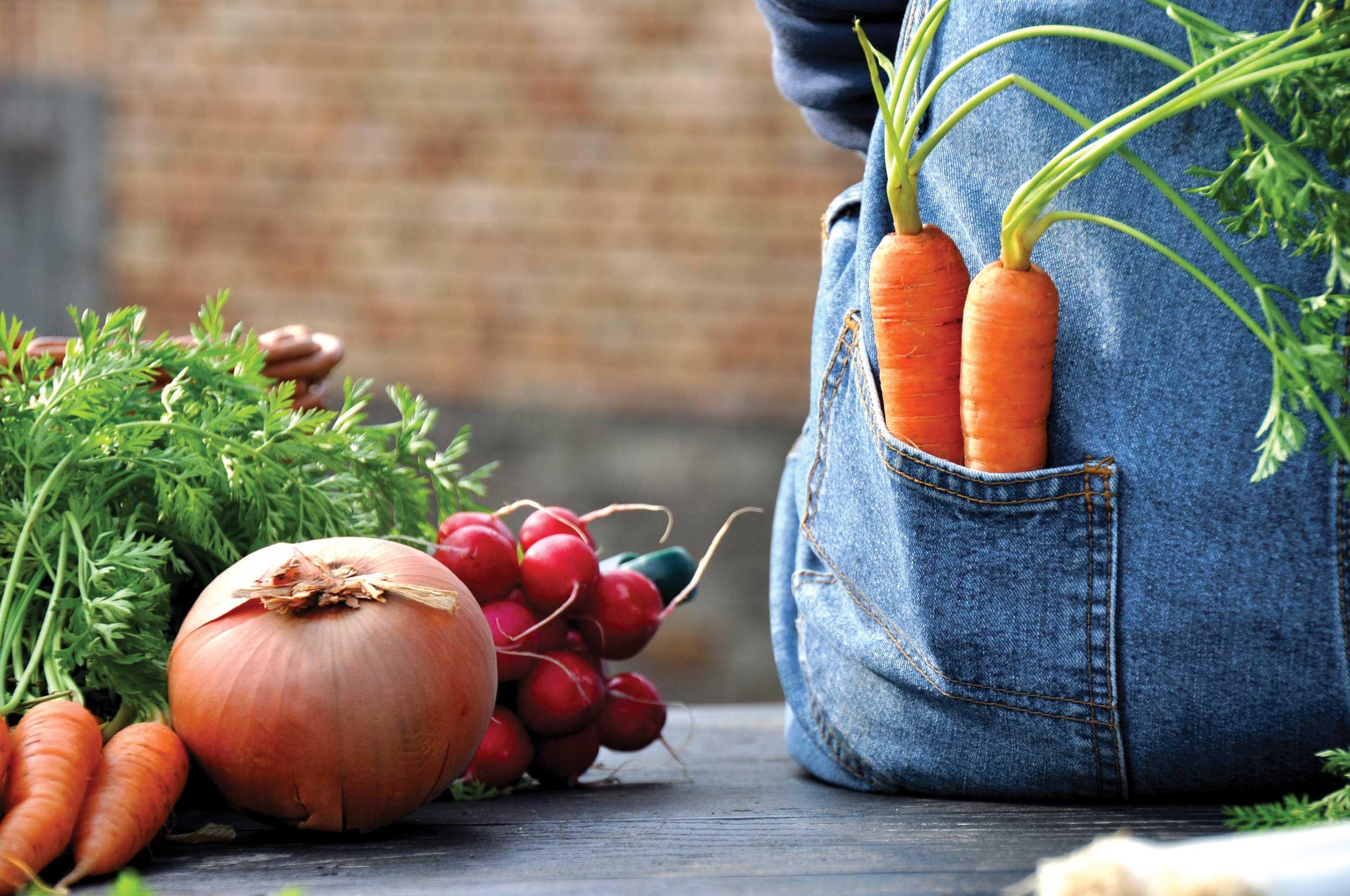 5 Veggies To Add To Your Organic Garden